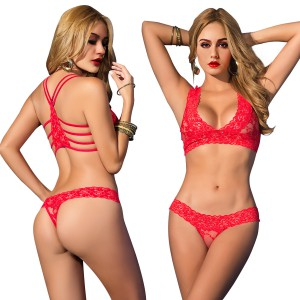 Women's Sexy Lingerie Floral Lace Sheer See Through Underwear Bra Panty Set